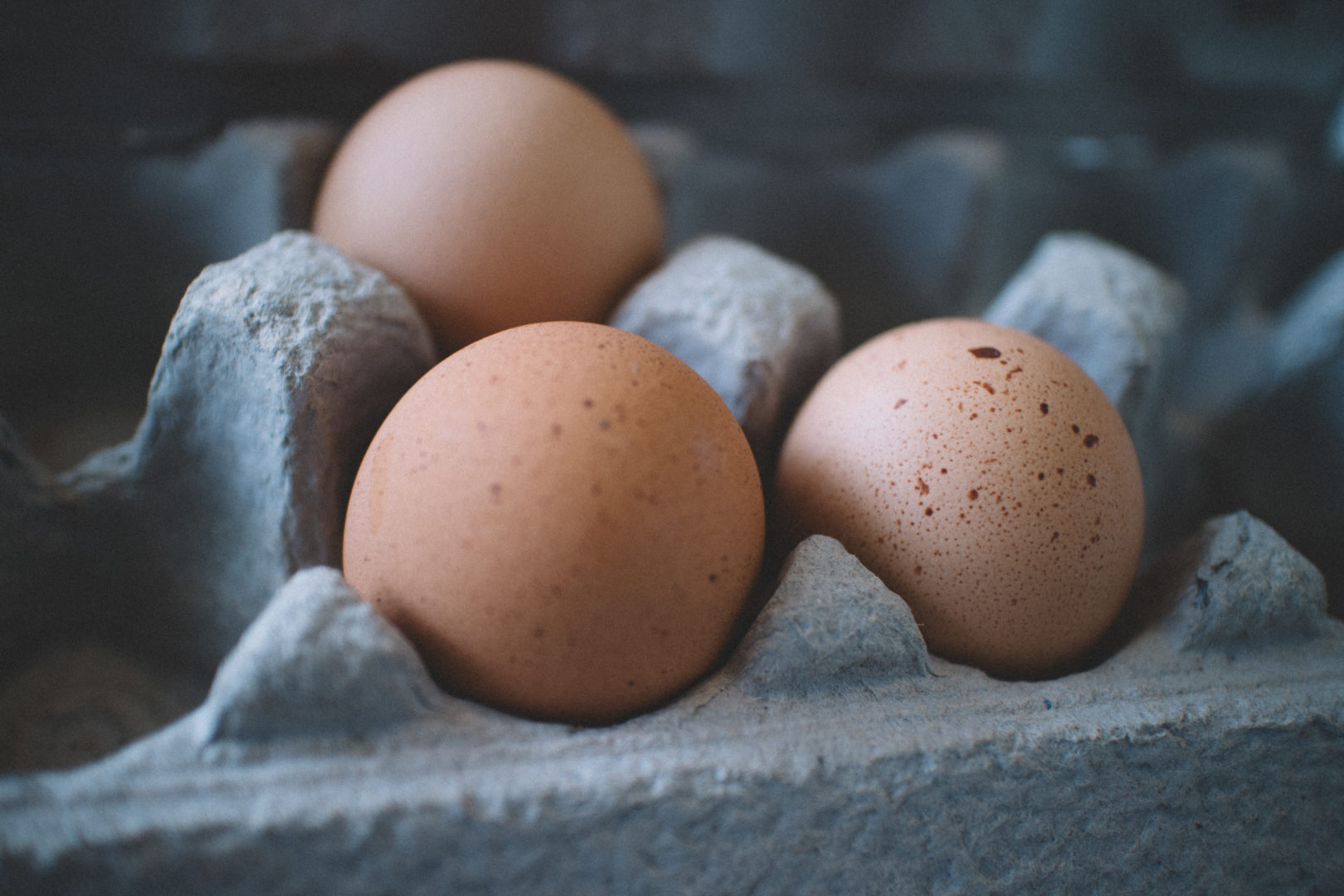 Three eggs sitting in egg carton