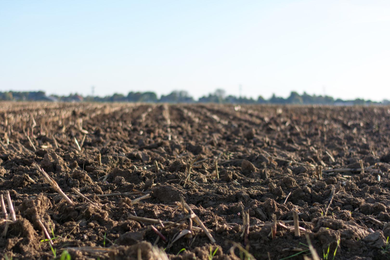 Landscape photo of tilled field