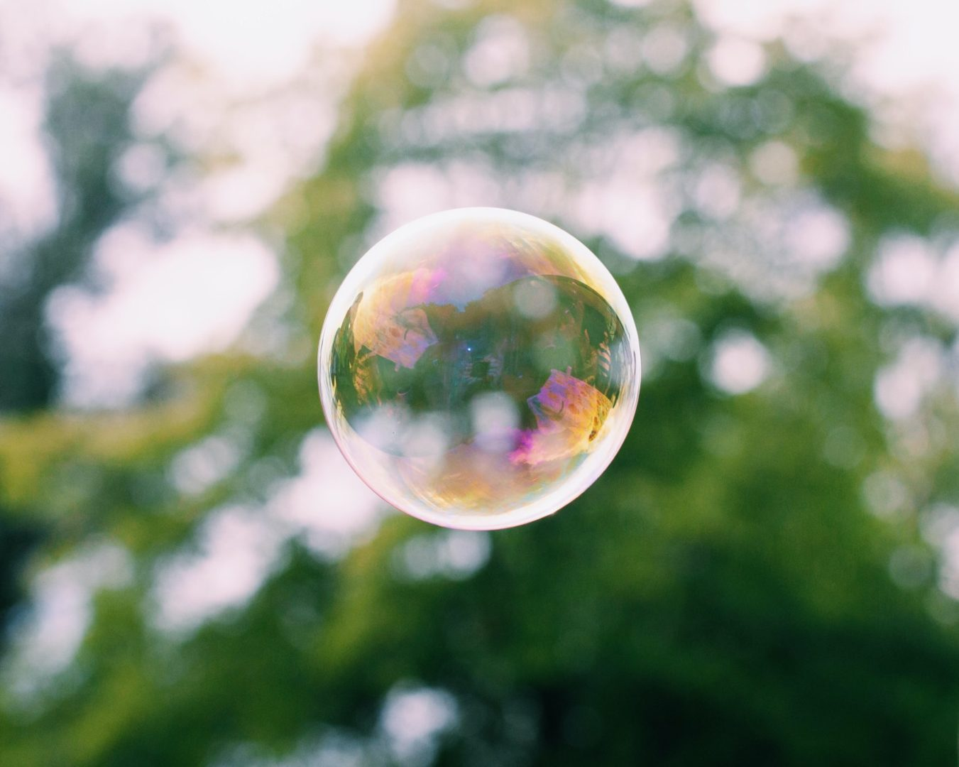 Bubble floating in air in front of trees