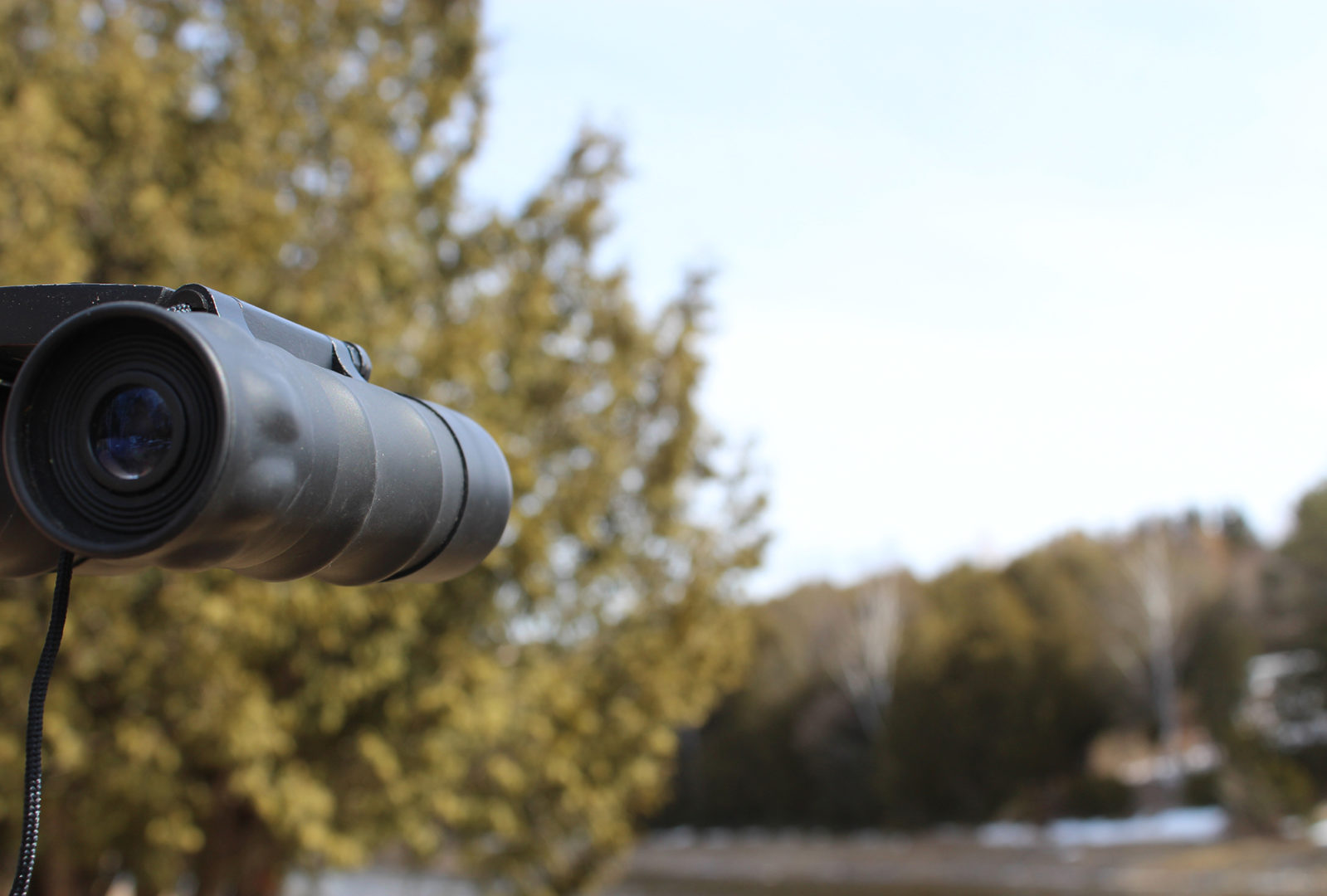Close up of binoculars, in front of forest and river