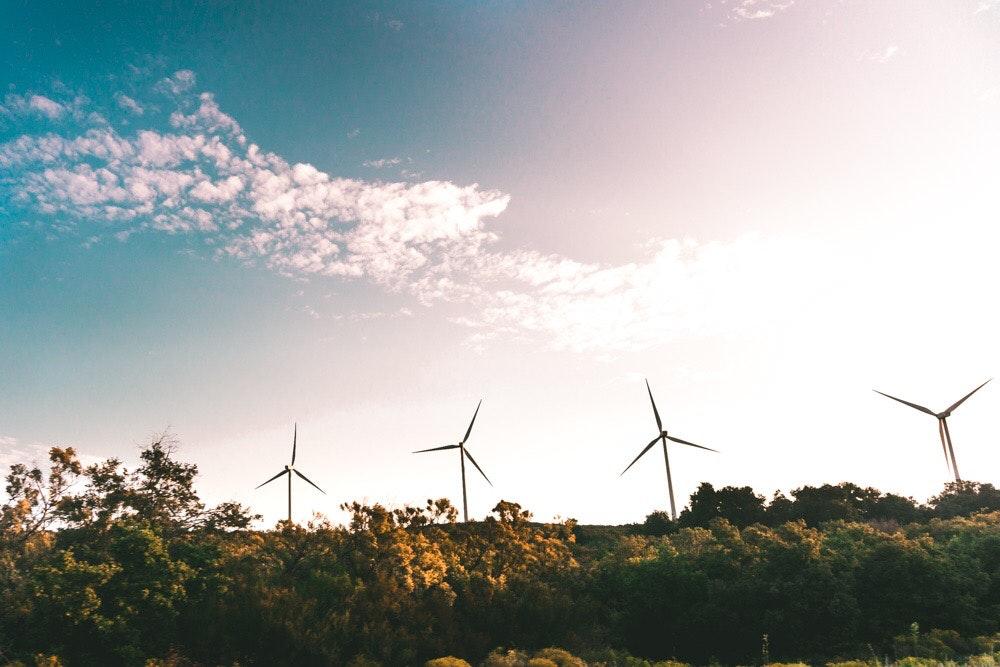 Windmills in the distance in field