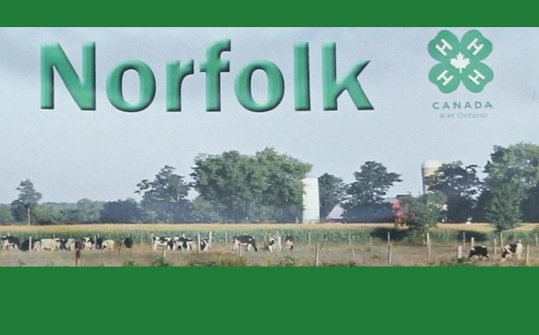 Norfolk 4-H Main Page