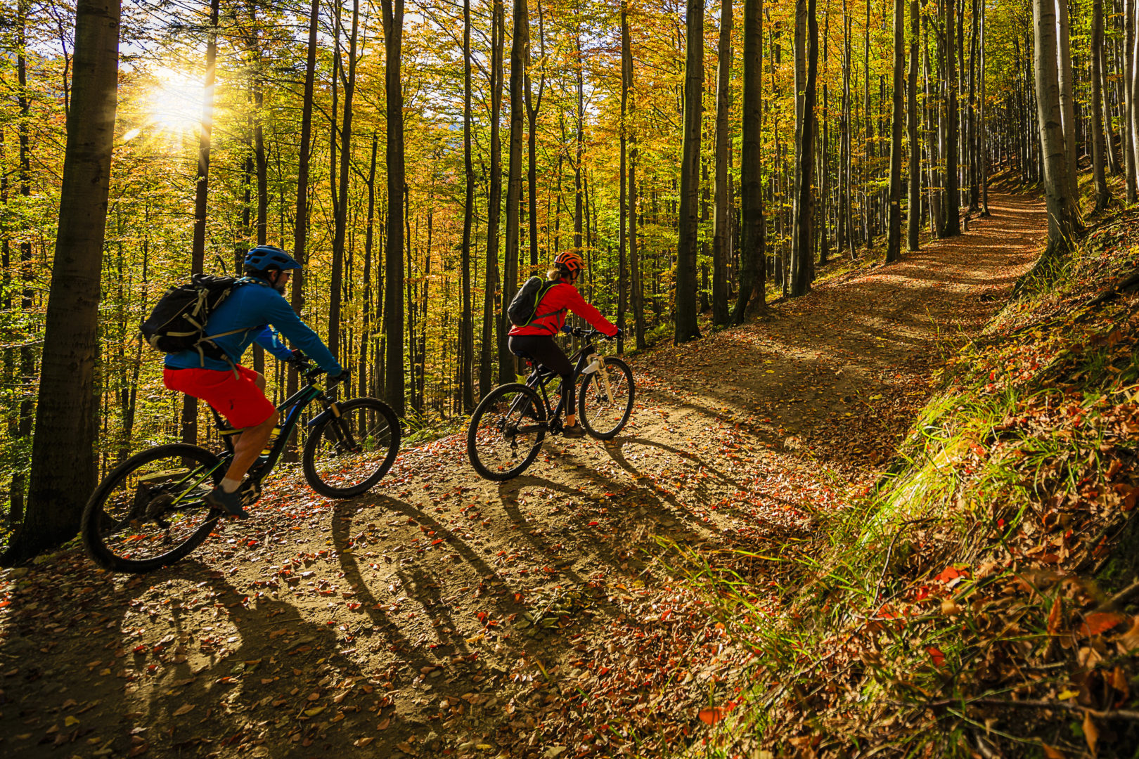 Two people biking up trail in forest during fall