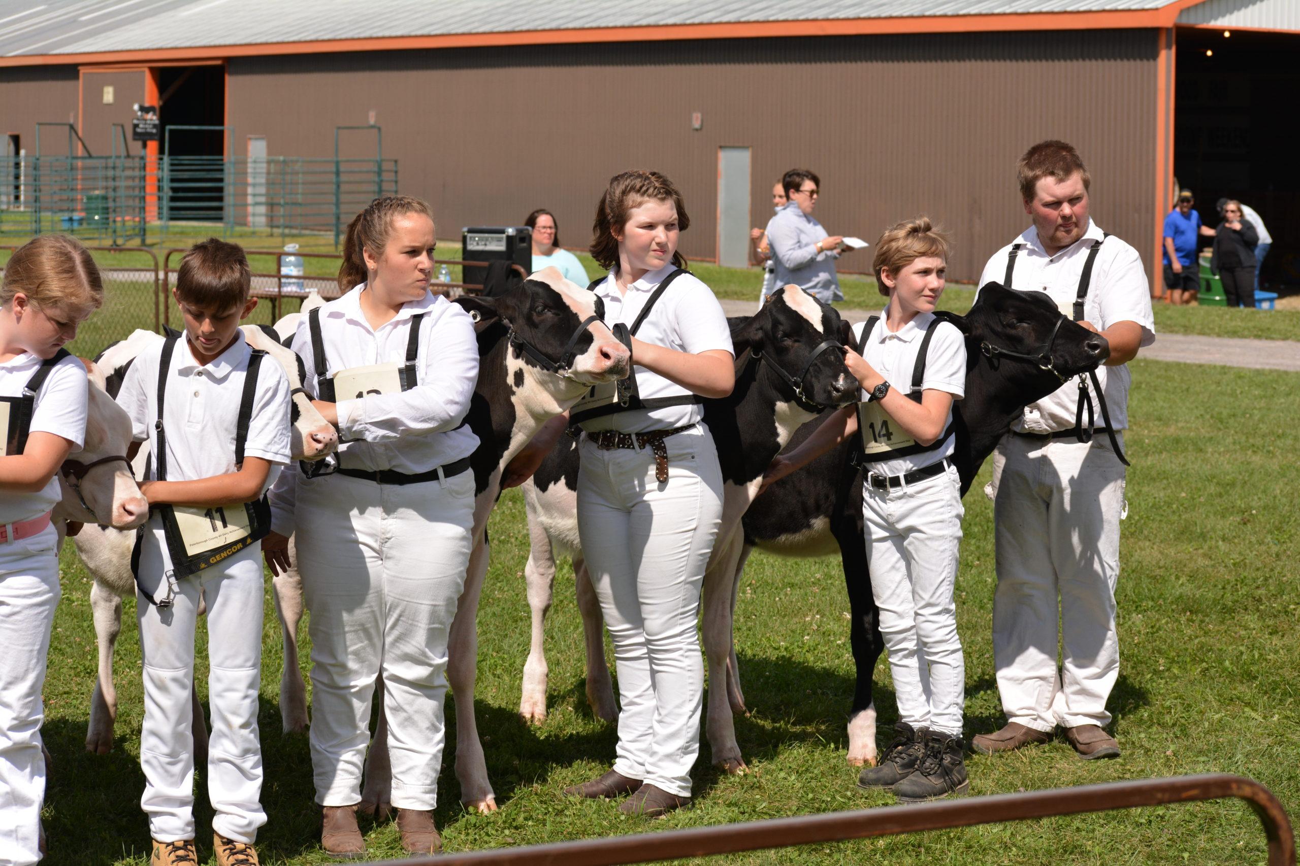Peterborough Dairy