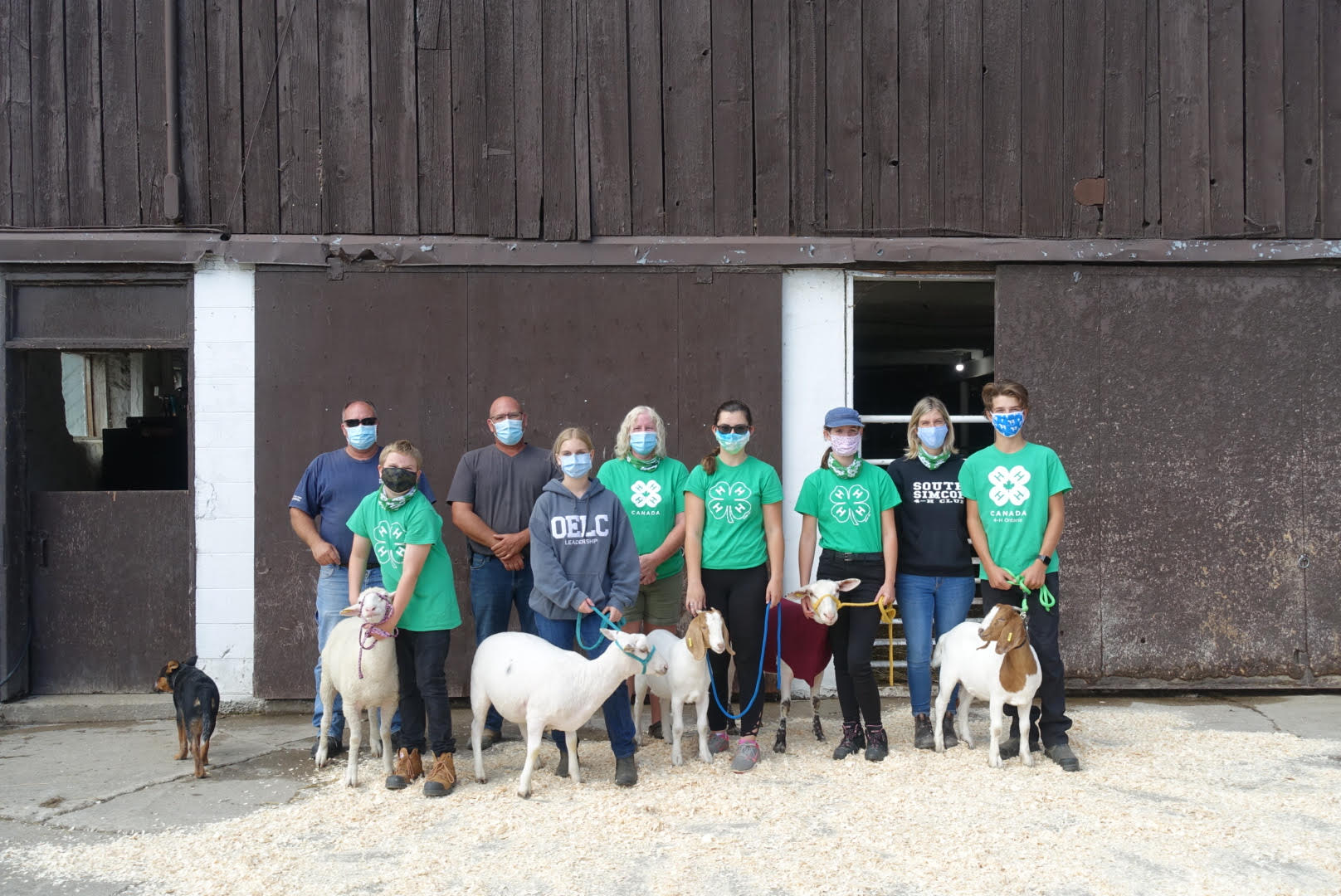 South Simcoe Sheep and Goat Club leaders, members and their projects