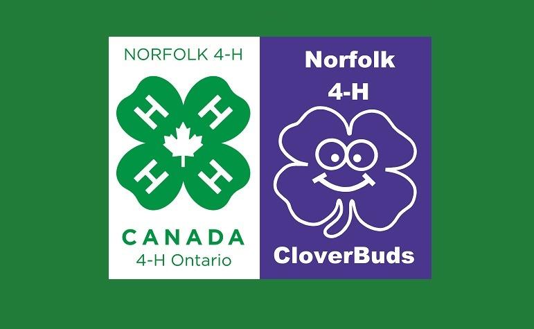 Norfolk 4-H Logos