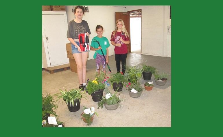 Norfolk 4-H Horticulture