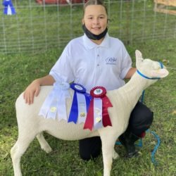 Member with her 4-H ewe lamb project on achievement day