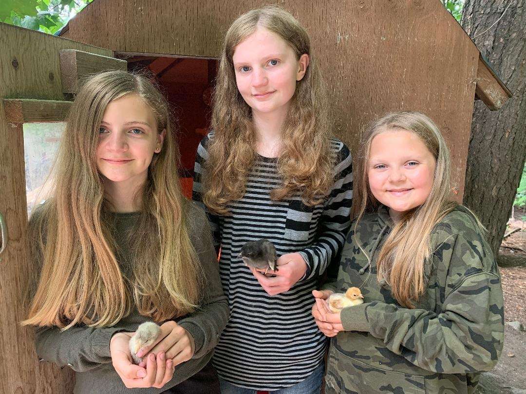 members with baby chicks and ducks