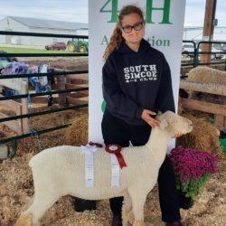 4-H member with her purebred Southdown ewe lamb