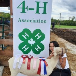 Grand Champion showperson for Cookstown and Everett 4-H sheep club with her purebred Southdown 4-H ewe lamb