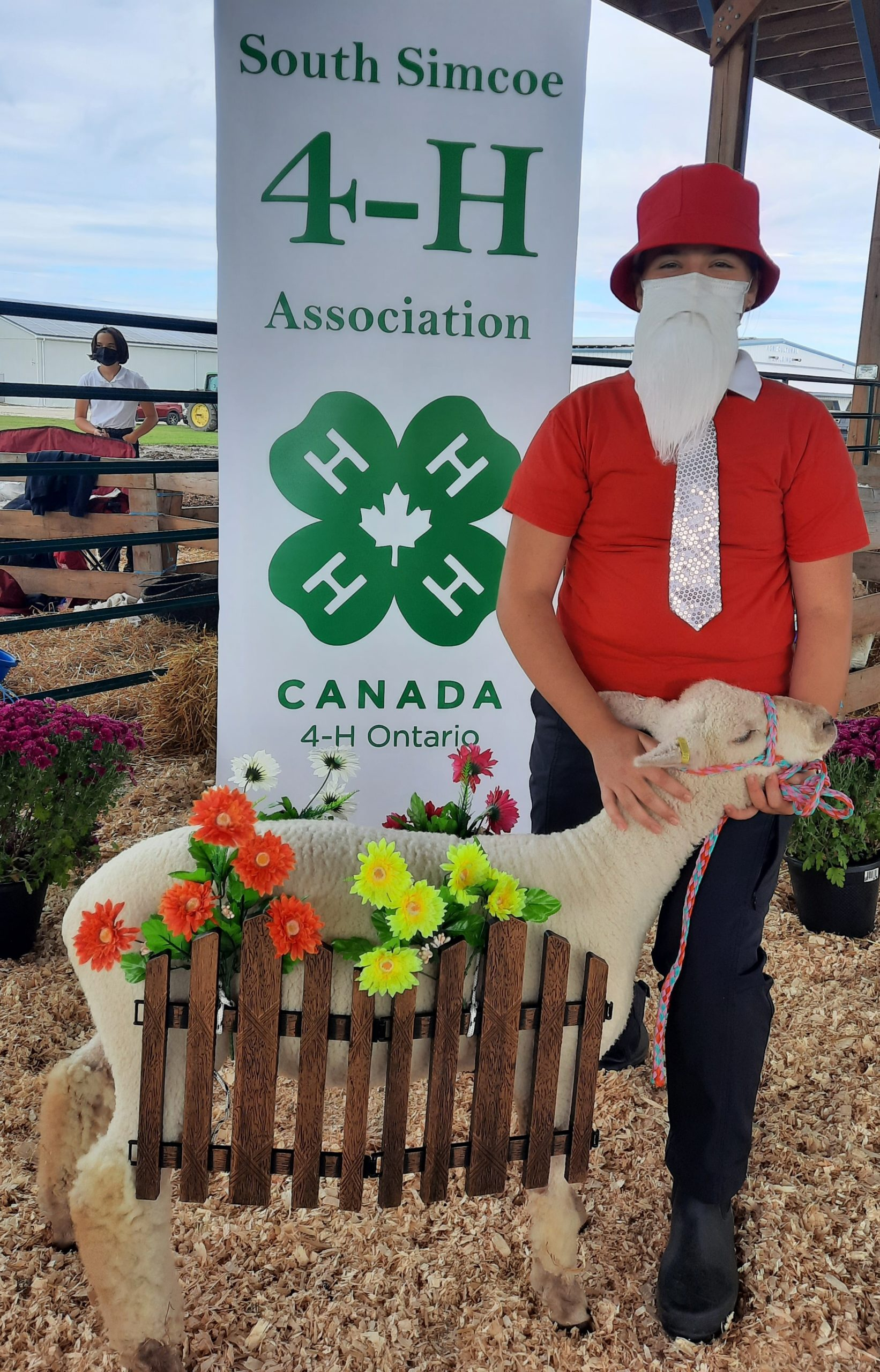Member and lamb dressed as a gnome and flowers with fence