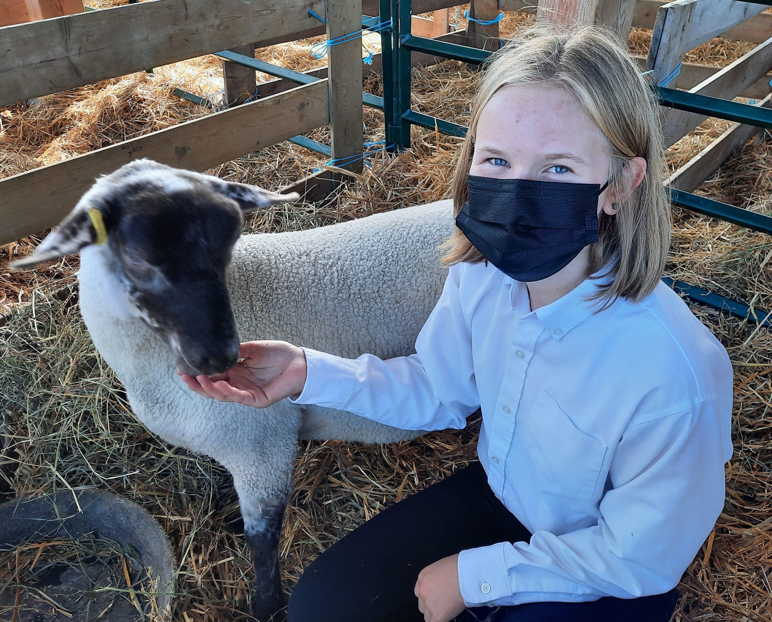 Member with her 4-H ewe lamb