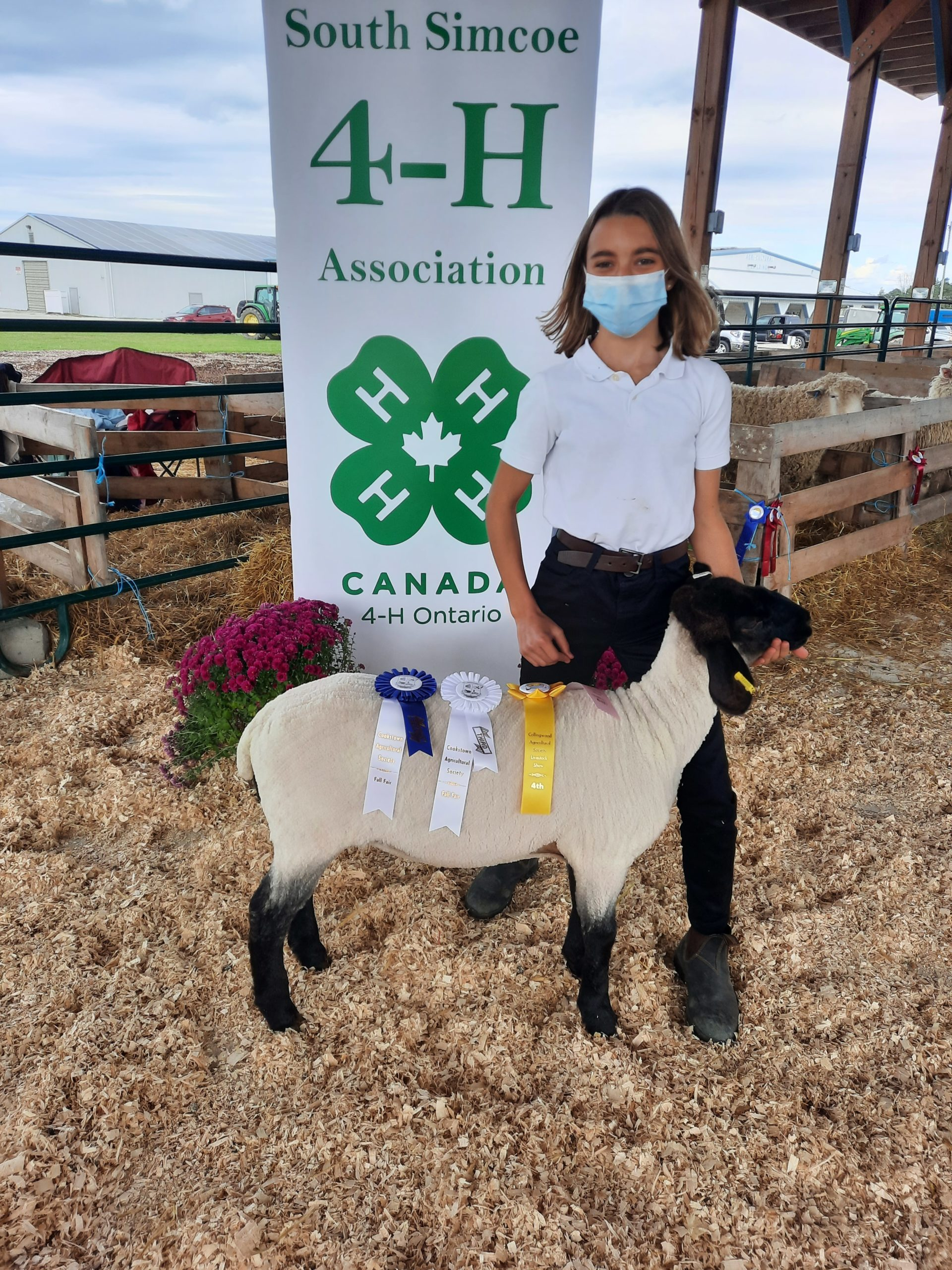 Member with her Suffolk 4-H ewe lamb
