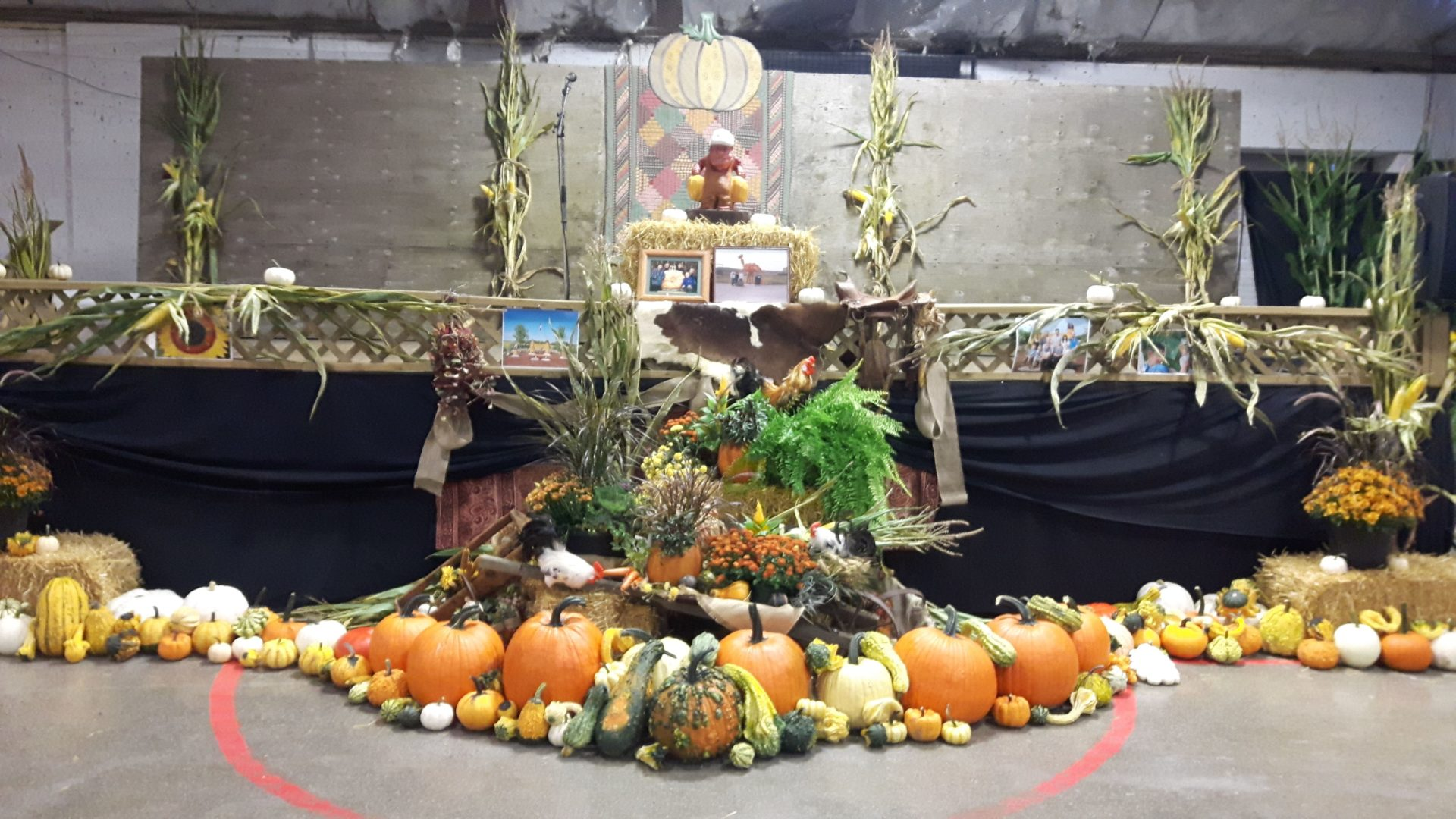 Beeton Fall Fair display 2019