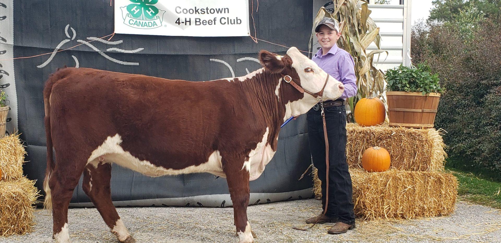 Member with 4-H calf posing.