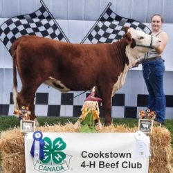 Member with calf at achievement day