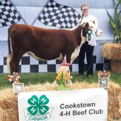 Member with their calf on achievement day