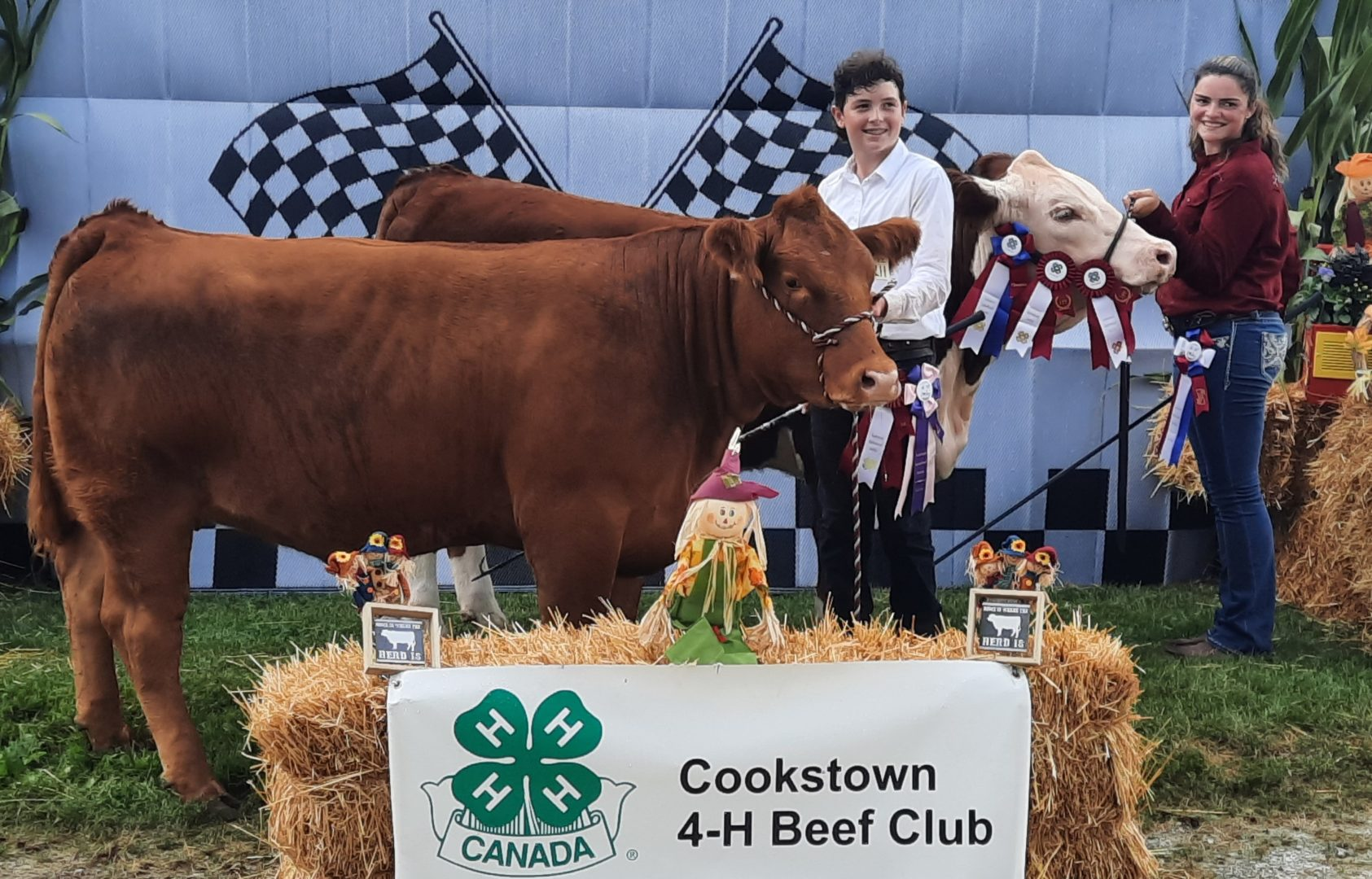Champion and Reserve Heifers and Showpersons