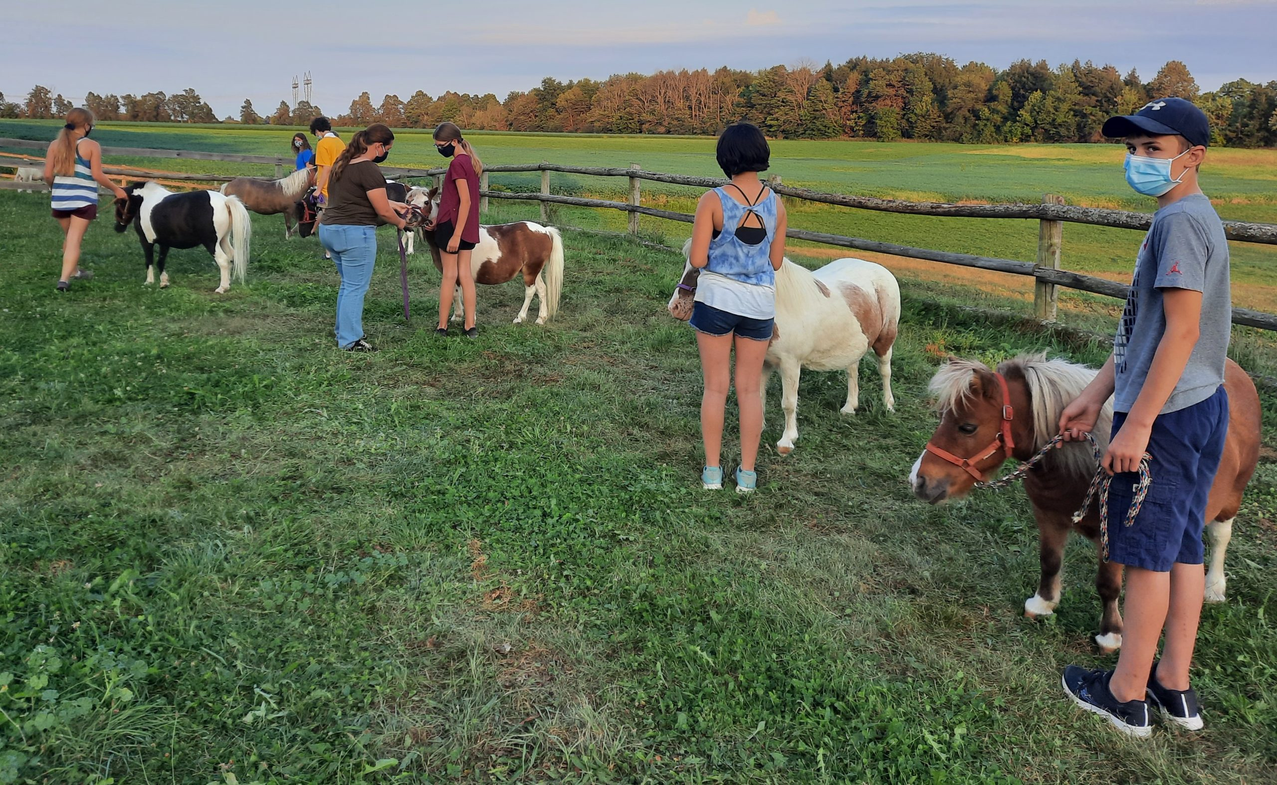 4-H members with mini horses at club meeting