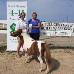 Member with mini horse receiving her placement