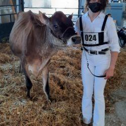 Member with 4-H heifer