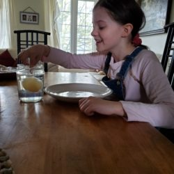 Clover bud member dropping egg in vinegar to see what happens next